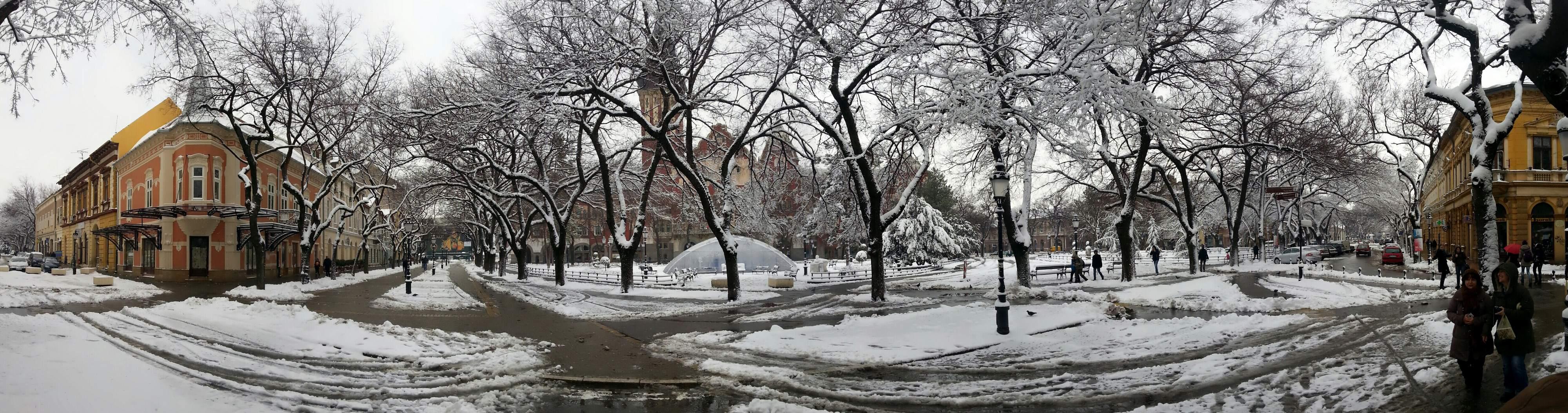 Sneg koji nas sve zaledio posle par dana temperature preko 15 stepeni