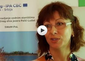 Nivo jezera Palić diktira ozelenjavanje obale