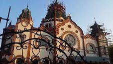Obilazak subotičke sinagoge - Vladimir Džamić