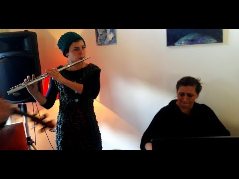 Izvođač zvuk muzika - muzička radionica Irene Popović Dragović