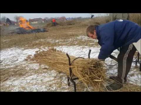 Gabor Kovač Košenje trske na jezeru Ludoš