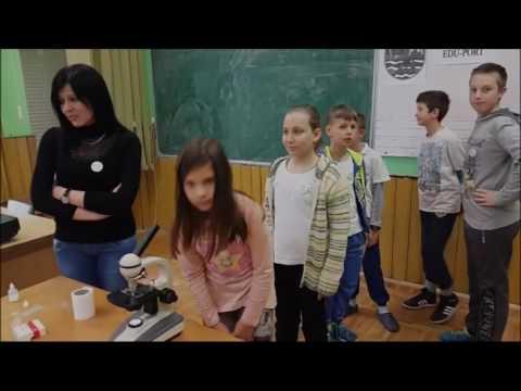 Vesna Weiss o Kosmoplovu i Danu planete zemlje