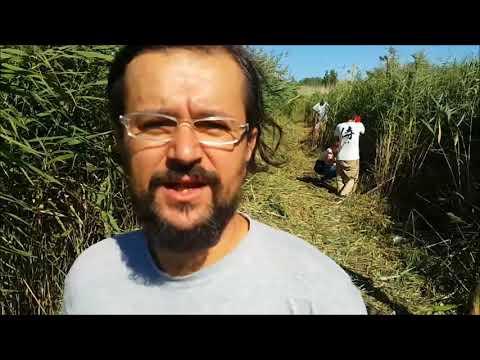 Darko Vasiljević o kampu na Ludoškom jezeru